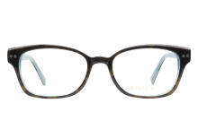 Evergreen 6013 Dark Tortoise Aqua