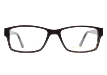 Evergreen 6019 Dark Tortoise